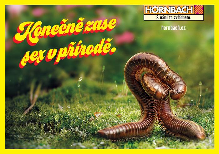 Zdroj: Hornbach