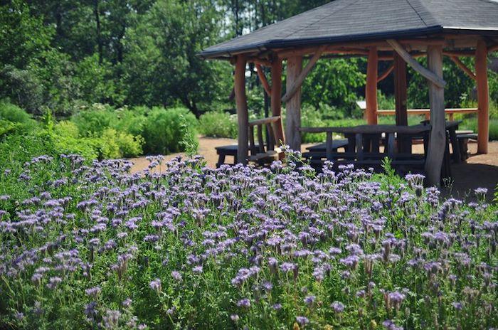 V zahradě lze k odpočinku využít i altán, zdroj: Nobilis Tilia.
