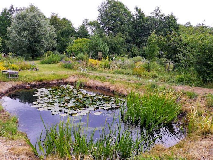 Firma si v zahradě zadržuje i dešťovou vodu, zdroj: Nobilis Tilia.