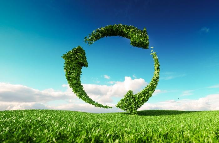 Pandemie změnila pohled na ekologii a udržitelnost, zdroj: Shutterstock