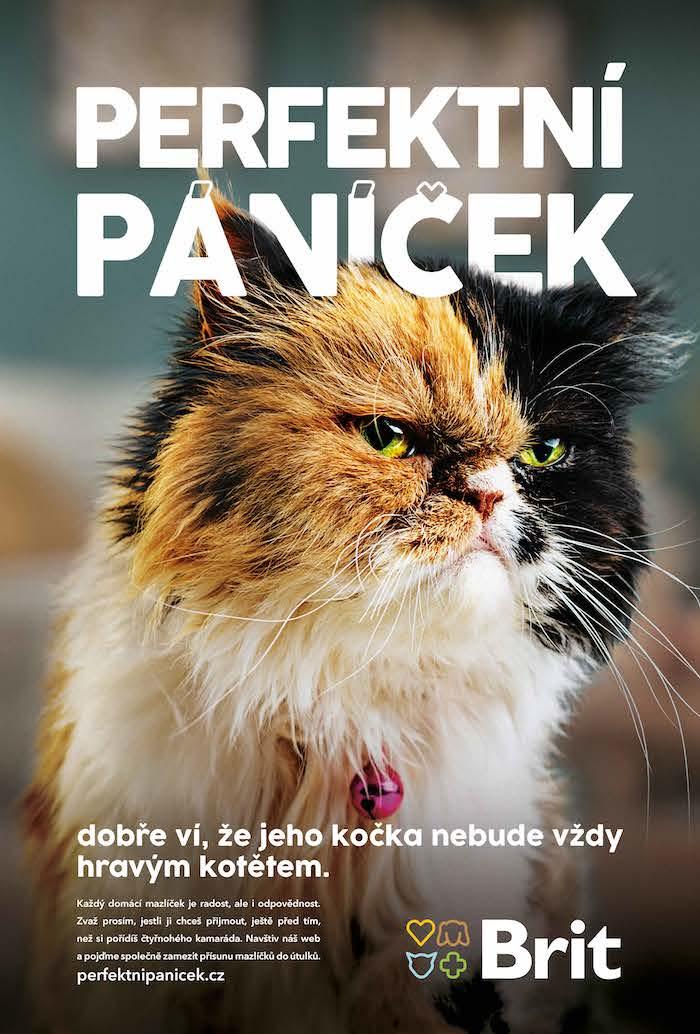 Jeden z klíčových vizuálů kampaně, zdroj: Vafo Praha