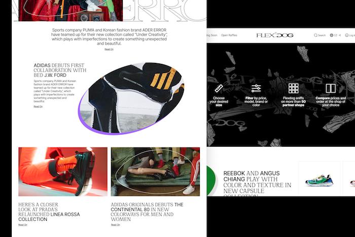 Náhled webu a obsahu nového online katalogu FlexDog, zdroj: FlexDog