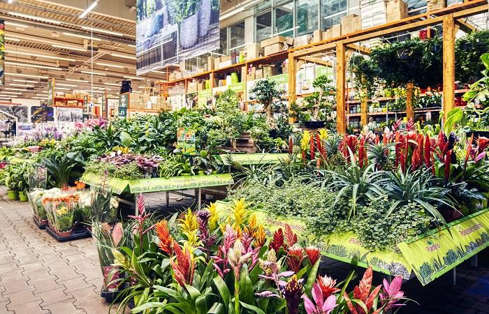 Hobbymarket provozuje 8 odborných center, žádné nové letos otevřít neplánuje, zdroj: Bauhaus