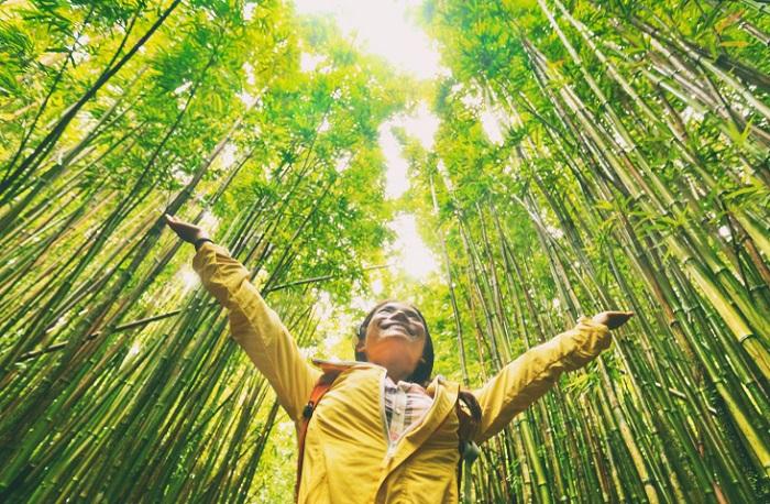 Bez spolupráce se zákazníky nemá pro firmy smysl udržitelnost prosazovat, zdroj: Shutterstock