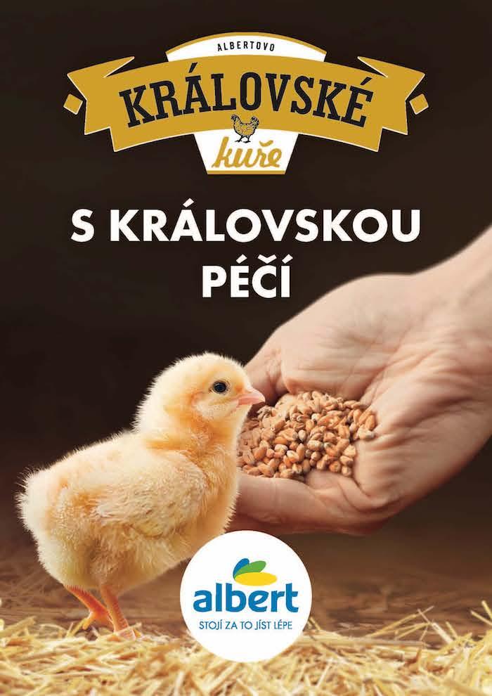 Klíčový vizuál ke kampani na Královské kuře, zdroj: Albert