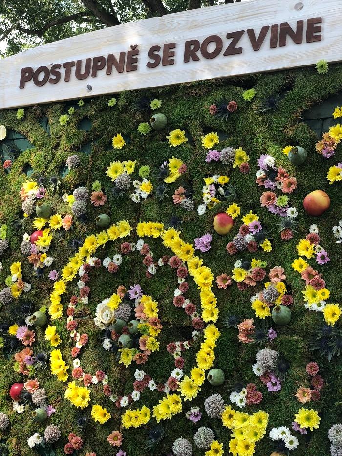 Mandala značky Birell Botanicals na Colours of Ostrava, foto: MediaGuru.cz