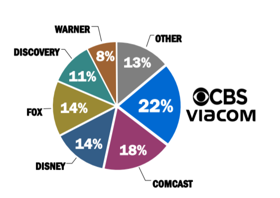 Podíl společností na TV trhu (počet domácností) v USA, zdroj: Viaocm