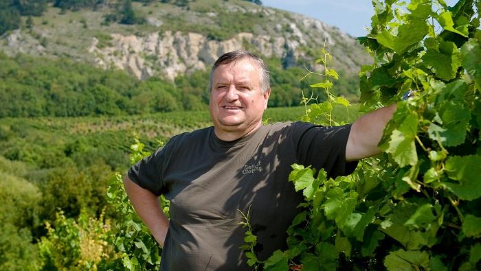 Vinařství Miloše Michlovského prodá 70 % produkce v řetězcích, 30 % v gastronomii a vinotékách, výrazně ale rostou i online prodeje. Zdroj: Vinselekt Michlovský