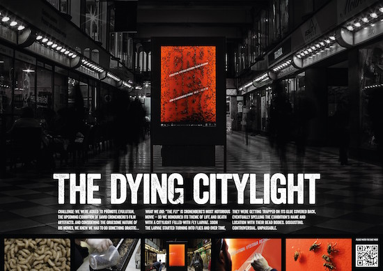 The Dying Citylight final