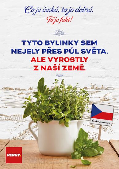 PENNY_Ceska_potravina_bylinky