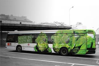 rencar_autobusy